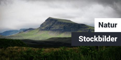 Natur Stockbilder Teaser