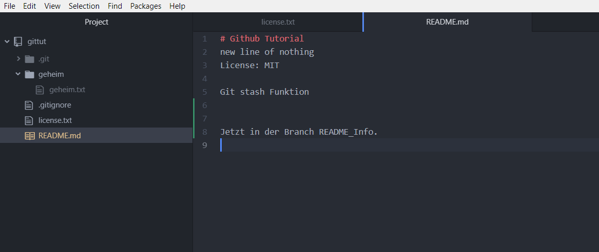 Git Brnach new Line in README