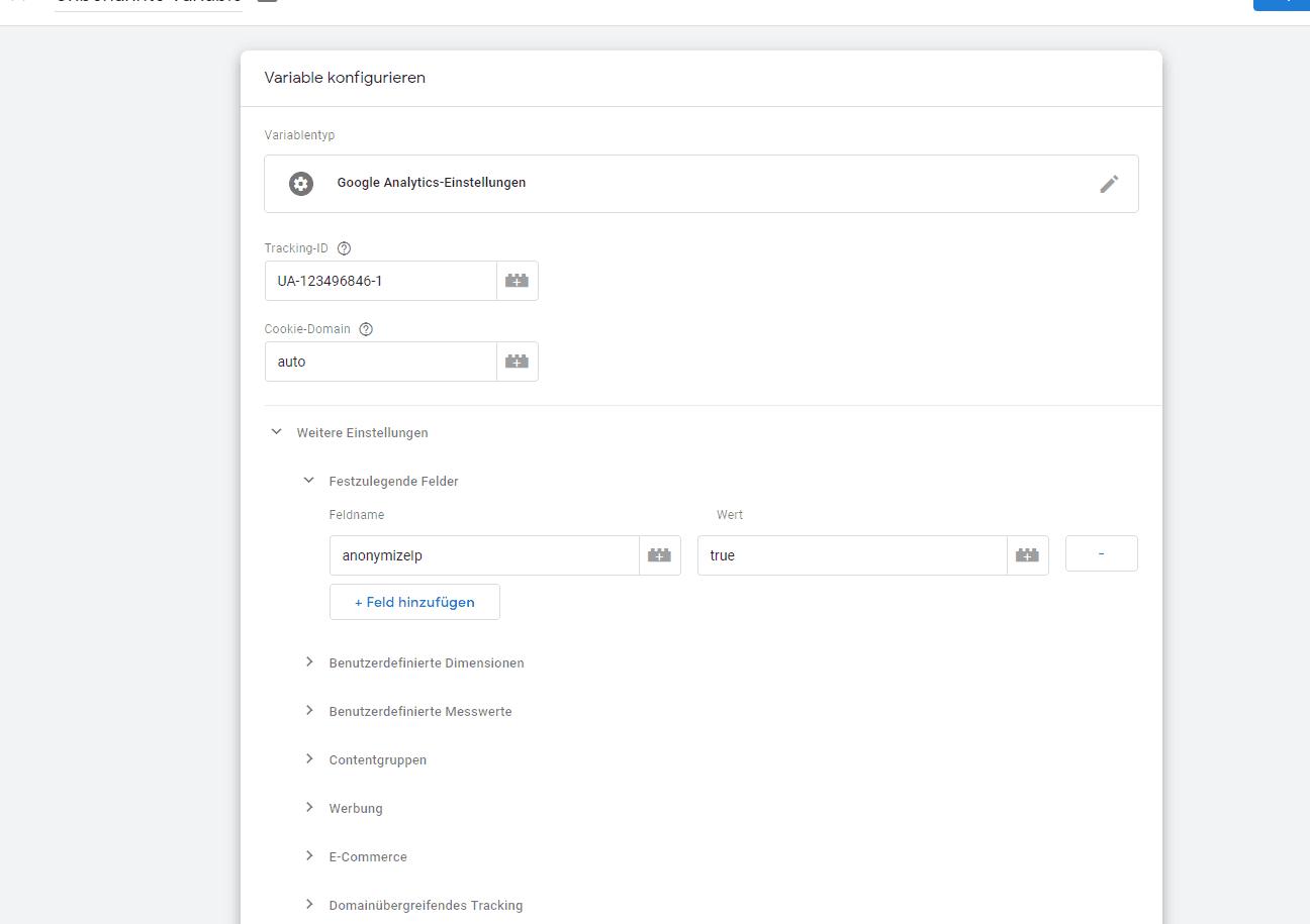 Google Analytics Einstellungen ID und Anon