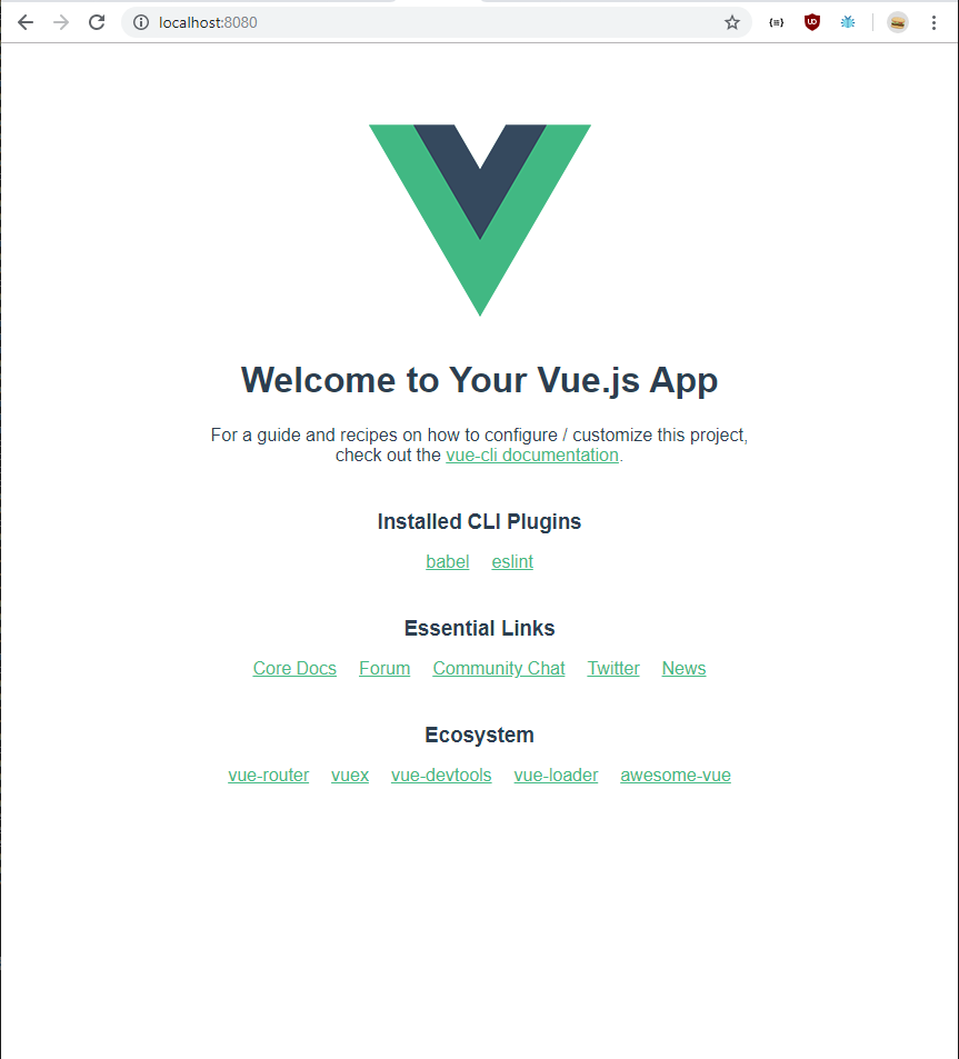 first run vuejs