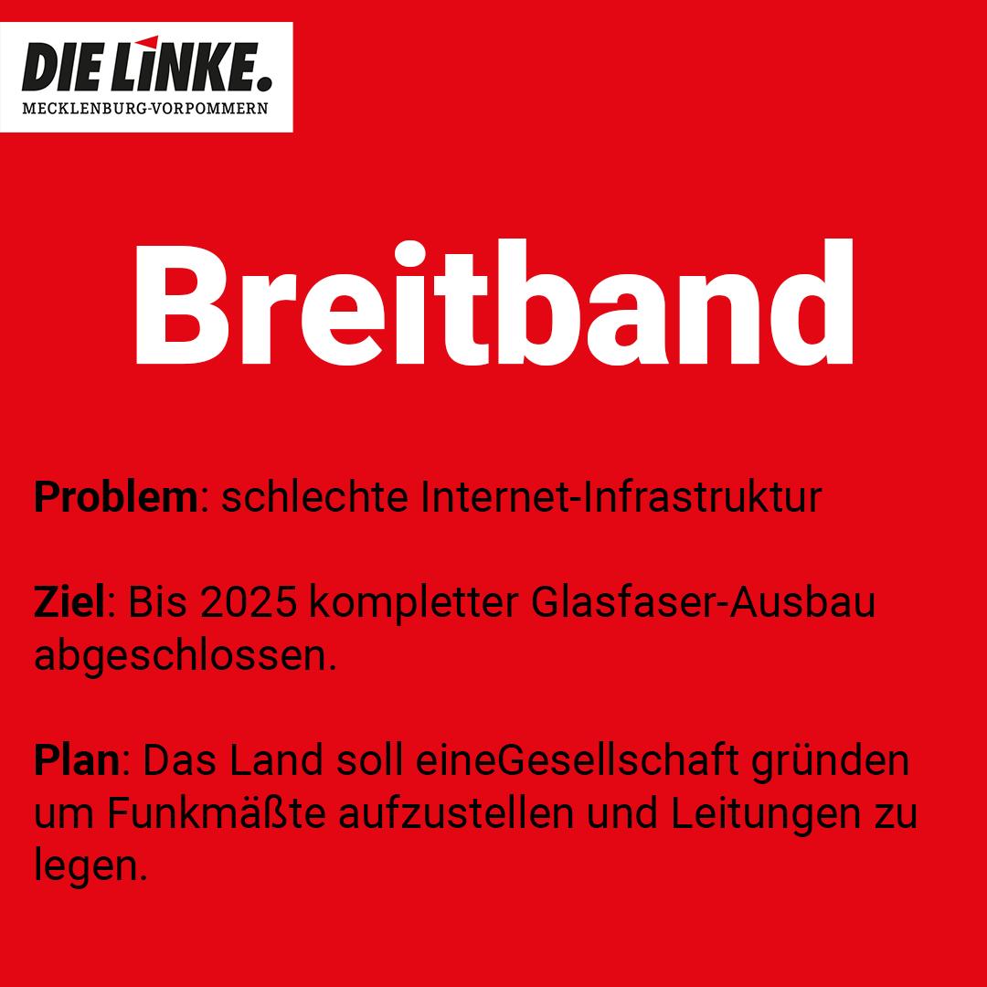 die linke mecklenburg vorpommern mv Stellung zu breitband 2021